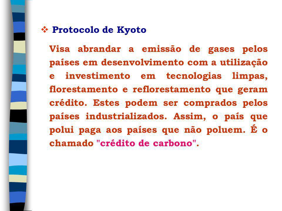 Protocolo de Kyoto Visa abrandar a emissão de gases pelos países em desenvolvimento com a utilização e investimento em tecnologias limpas, florestamento e reflorestamento que geram crédito.