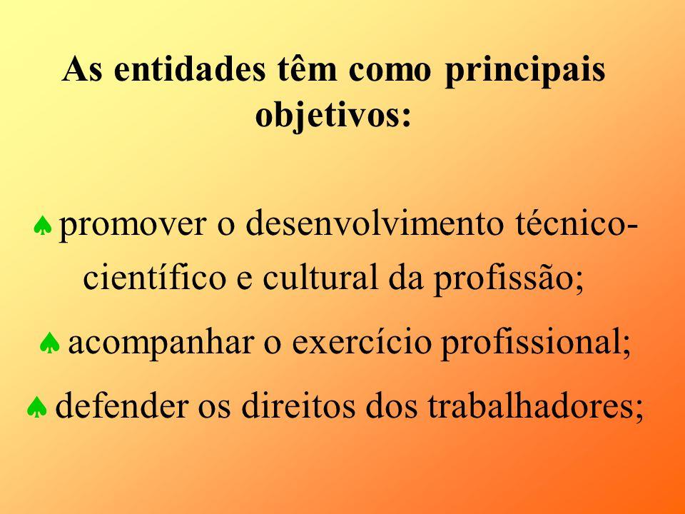 As entidades têm como principais objetivos: promover o desenvolvimento técnico- científico e cultural da profissão; acompanhar o exercício profissiona