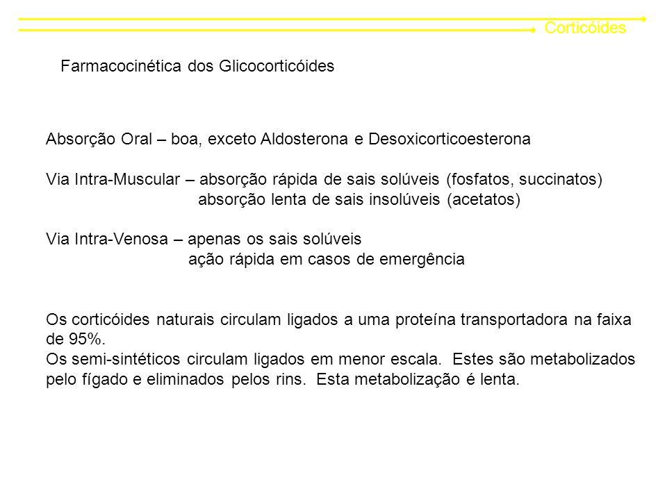 Corticóides Farmacocinética dos Glicocorticóides Absorção Oral – boa, exceto Aldosterona e Desoxicorticoesterona Via Intra-Muscular – absorção rápida de sais solúveis (fosfatos, succinatos) absorção lenta de sais insolúveis (acetatos) Via Intra-Venosa – apenas os sais solúveis ação rápida em casos de emergência Os corticóides naturais circulam ligados a uma proteína transportadora na faixa de 95%.