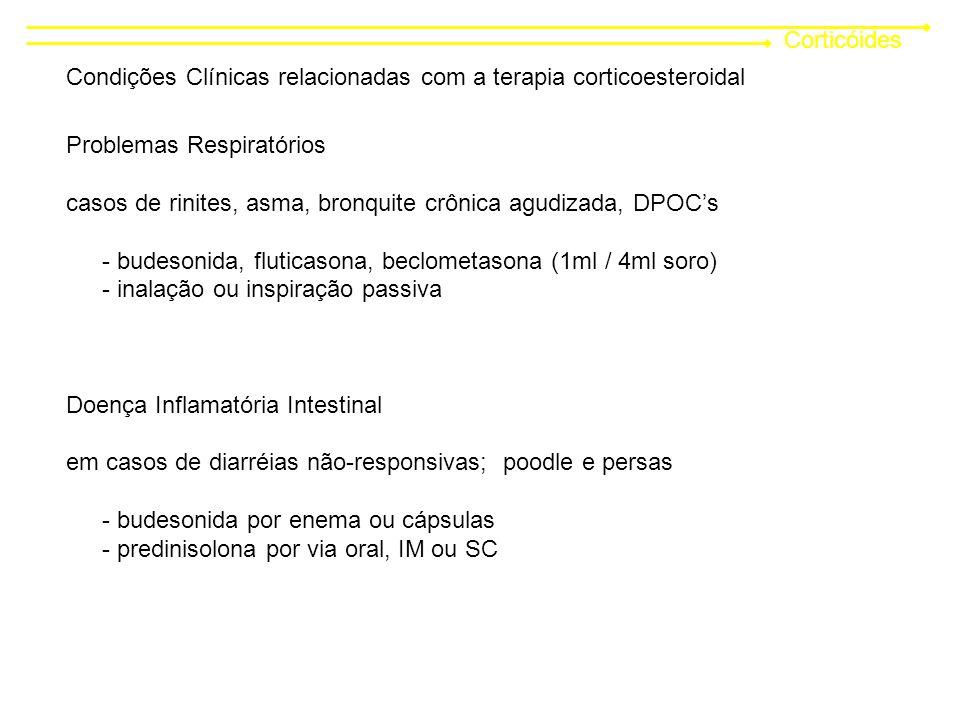 Corticóides Condições Clínicas relacionadas com a terapia corticoesteroidal Problemas Respiratórios casos de rinites, asma, bronquite crônica agudizada, DPOCs - budesonida, fluticasona, beclometasona (1ml / 4ml soro) - inalação ou inspiração passiva Doença Inflamatória Intestinal em casos de diarréias não-responsivas; poodle e persas - budesonida por enema ou cápsulas - predinisolona por via oral, IM ou SC