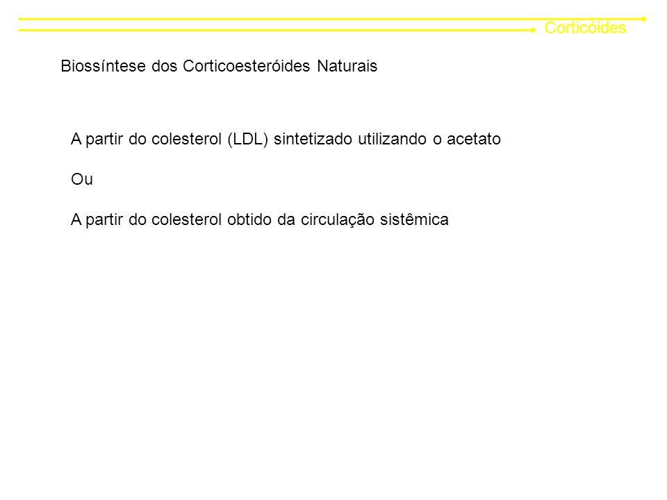 Corticóides Biossíntese dos Corticoesteróides Naturais A partir do colesterol (LDL) sintetizado utilizando o acetato Ou A partir do colesterol obtido da circulação sistêmica