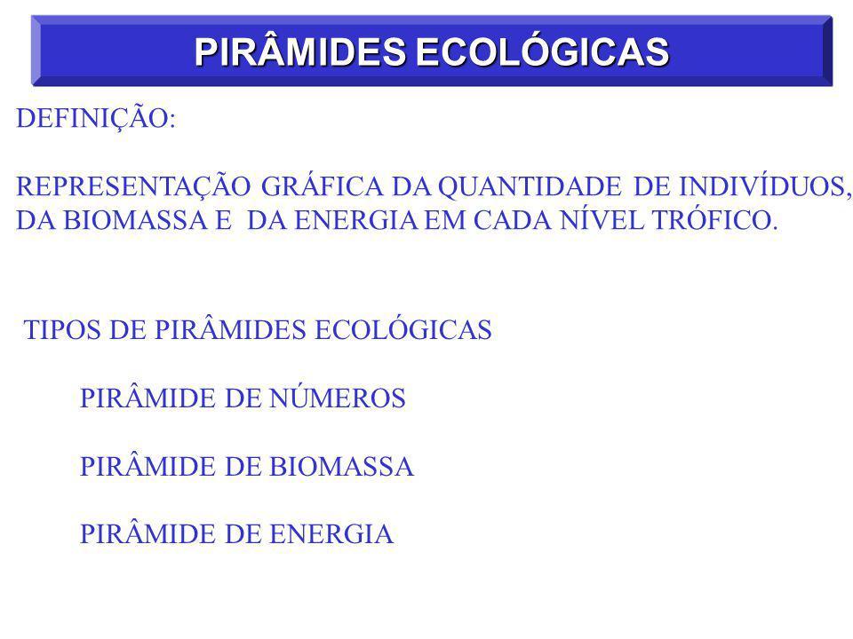 PIRÂMIDES ECOLÓGICAS DEFINIÇÃO: REPRESENTAÇÃO GRÁFICA DA QUANTIDADE DE INDIVÍDUOS, DA BIOMASSA E DA ENERGIA EM CADA NÍVEL TRÓFICO.
