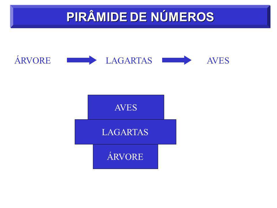 ÁRVORELAGARTASAVES PIRÂMIDE DE NÚMEROS ÁRVORE LAGARTAS AVES