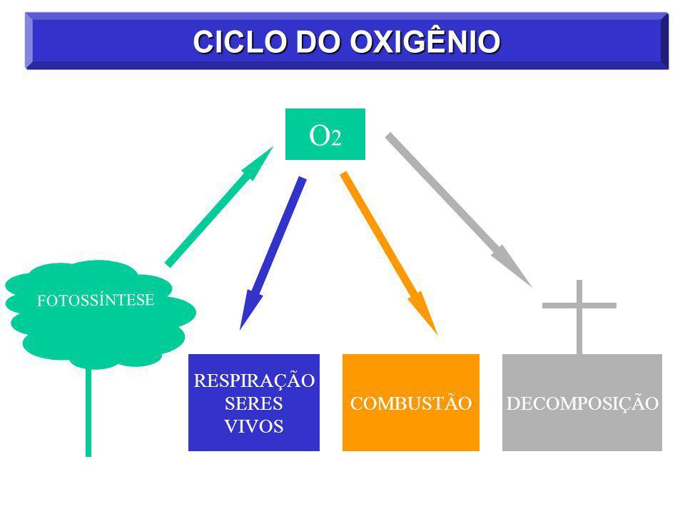 CICLO DO OXIGÊNIO RESPIRAÇÃO SERES VIVOS FOTOSSÍNTESE COMBUSTÃO DECOMPOSIÇÃO O2O2