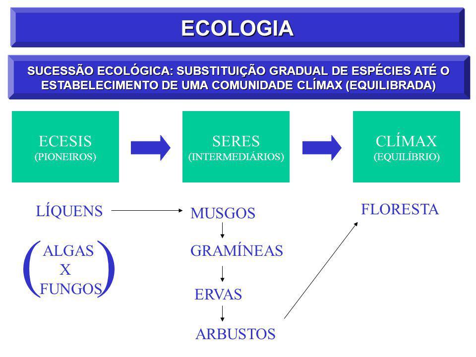 ECOLOGIA SUCESSÃO ECOLÓGICA: SUBSTITUIÇÃO GRADUAL DE ESPÉCIES ATÉ O ESTABELECIMENTO DE UMA COMUNIDADE CLÍMAX (EQUILIBRADA) ECESIS (PIONEIROS) SERES (INTERMEDIÁRIOS) CLÍMAX (EQUILÍBRIO) LÍQUENS MUSGOS GRAMÍNEAS ERVAS ARBUSTOS FLORESTA ALGAS X FUNGOS ()