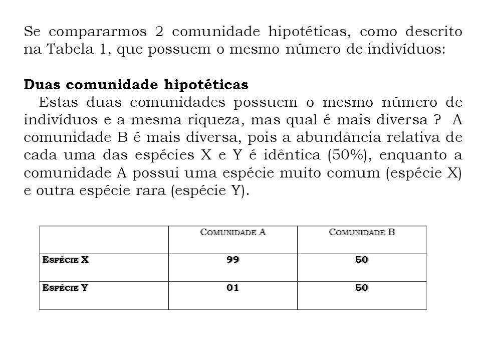 PIRÂMIDE DE NÚMEROS ÁRVOREPULGÕESBACTÉRIAS ÁRVORE PULGÕES BACTÉRIAS