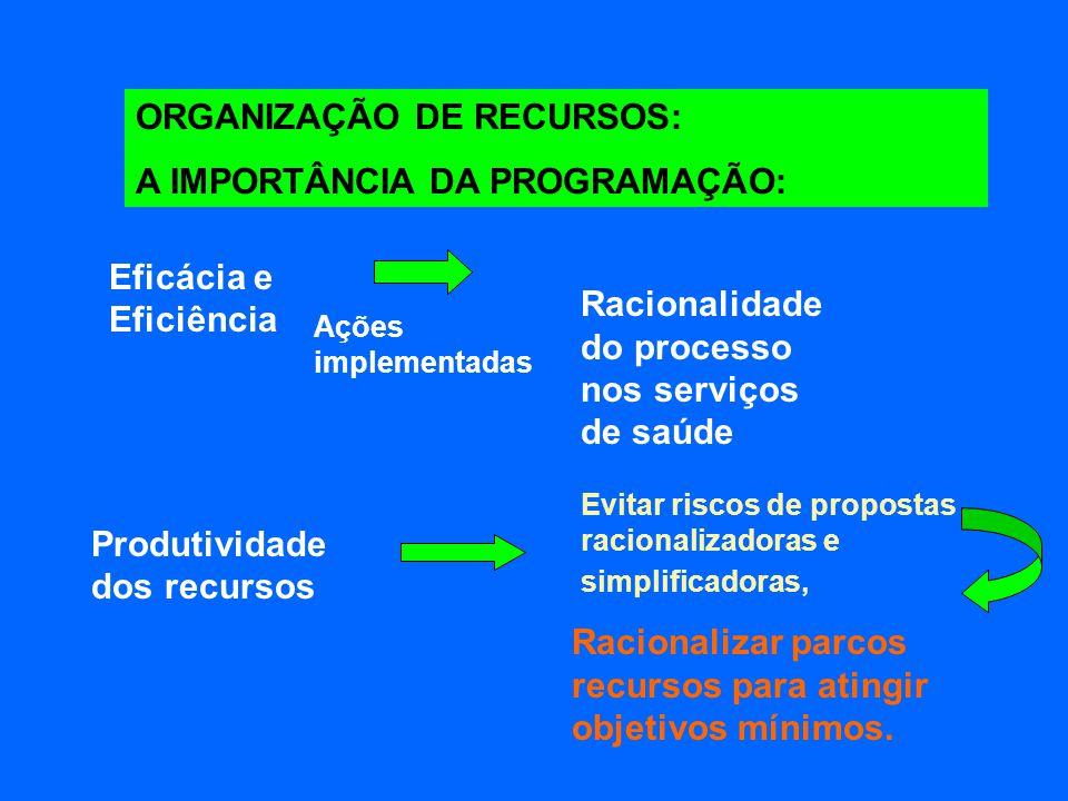 ORGANIZAÇÃO DE RECURSOS: A IMPORTÂNCIA DA PROGRAMAÇÃO: Eficácia e Eficiência Ações implementadas Racionalidade do processo nos serviços de saúde Produ