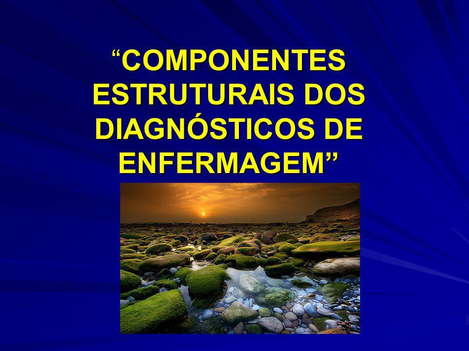 MODELO BIFOCAL DA PRÁTICA CLÍNICA As enfermeiras são responsáveis por dois tipos de julgamentos clínicos : os diagnósticos de enfermagem e os problemas colaborativos.