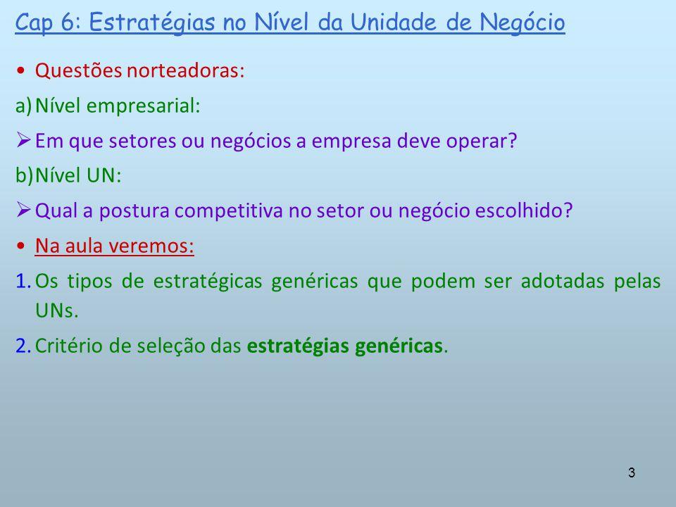 3 Questões norteadoras: a)Nível empresarial: Em que setores ou negócios a empresa deve operar? b)Nível UN: Qual a postura competitiva no setor ou negó