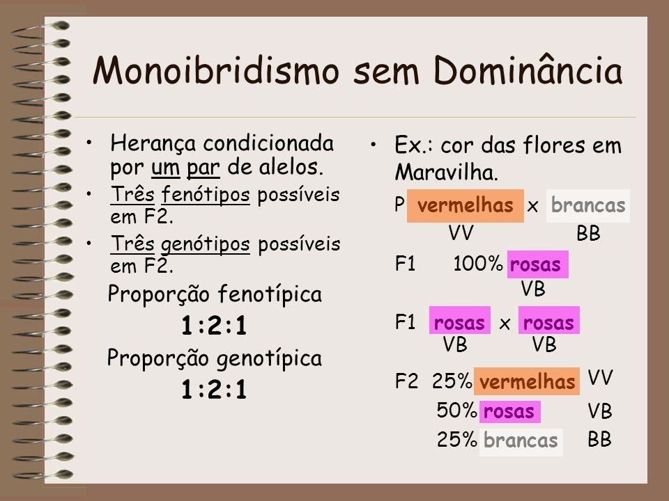 Monoibridismo sem Dominância Herança condicionada por um par de alelos. Três fenótipos possíveis em F2. Três genótipos possíveis em F2. Proporção feno