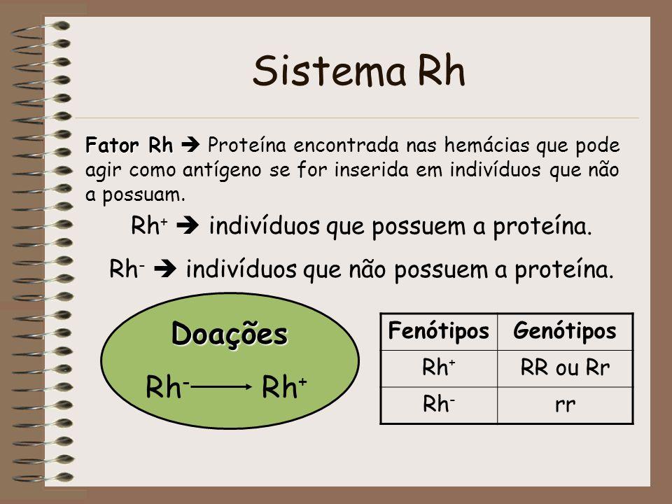 Sistema Rh Fator Rh Fator Rh Proteína encontrada nas hemácias que pode agir como antígeno se for inserida em indivíduos que não a possuam. Rh + indiví