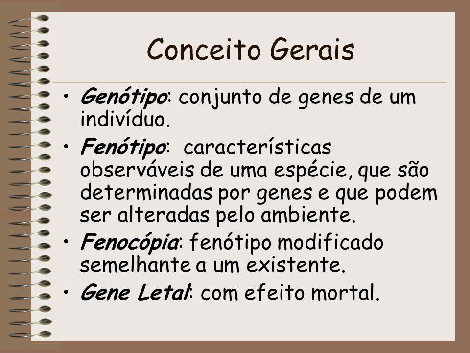 Conceito Gerais Genótipo: conjunto de genes de um indivíduo. Fenótipo: características observáveis de uma espécie, que são determinadas por genes e qu