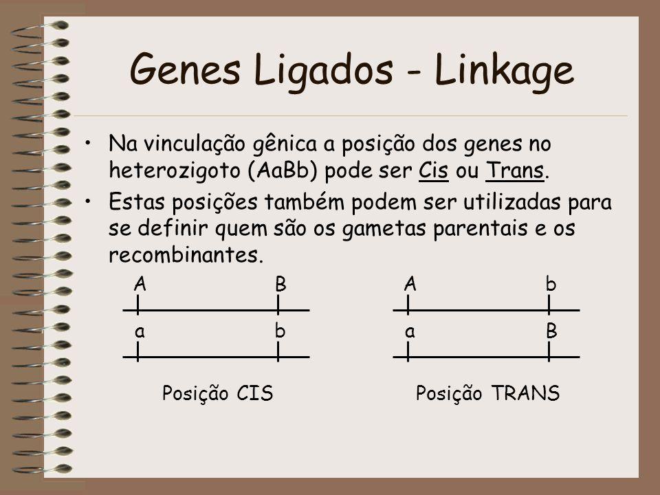 Genes Ligados - Linkage Na vinculação gênica a posição dos genes no heterozigoto (AaBb) pode ser Cis ou Trans. Estas posições também podem ser utiliza