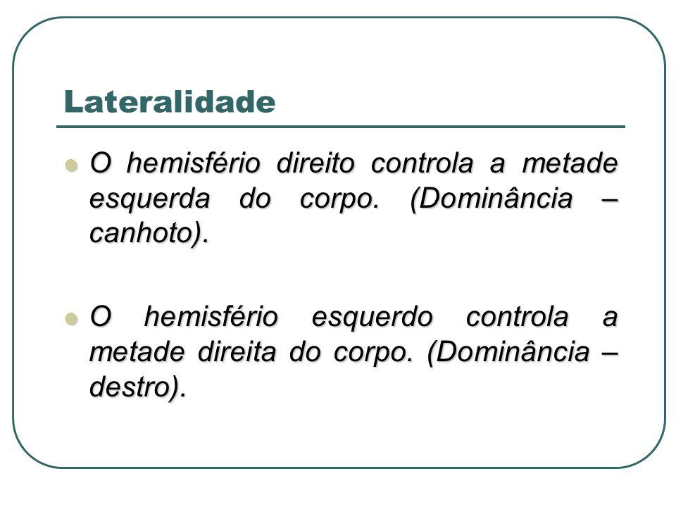 O hemisfério direito controla a metade esquerda do corpo. (Dominância – canhoto). O hemisfério direito controla a metade esquerda do corpo. (Dominânci