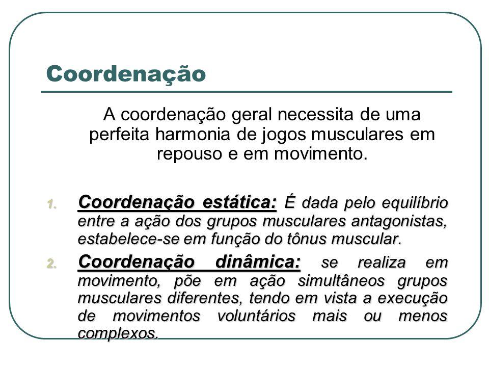 A coordenação geral necessita de uma perfeita harmonia de jogos musculares em repouso e em movimento. 1. Coordenação estática: É dada pelo equilíbrio