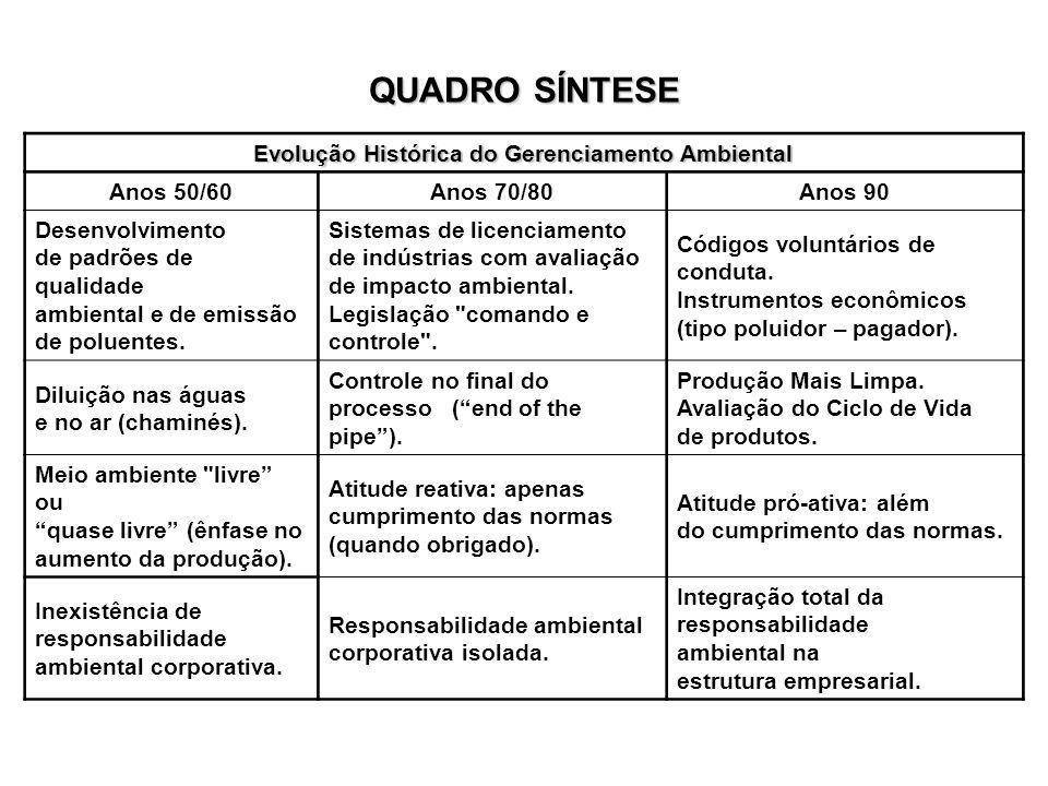 Evolução Histórica do Gerenciamento Ambiental Anos 50/60Anos 70/80Anos 90 Desenvolvimento de padrões de qualidade ambiental e de emissão de poluentes.