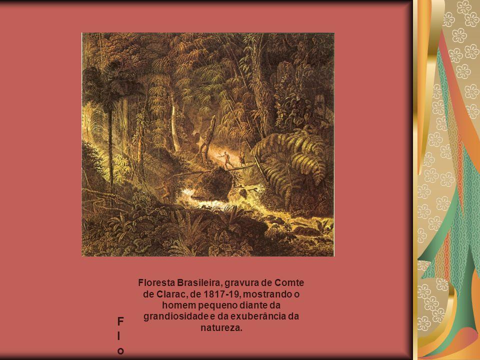 FloresFlores Floresta Brasileira, gravura de Comte de Clarac, de 1817-19, mostrando o homem pequeno diante da grandiosidade e da exuberância da nature