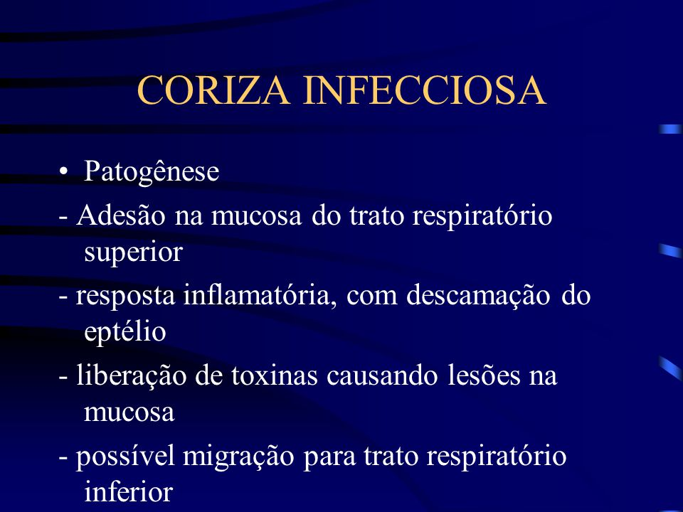 CORIZA INFECCIOSA Patogênese - Adesão na mucosa do trato respiratório superior - resposta inflamatória, com descamação do eptélio - liberação de toxinas causando lesões na mucosa - possível migração para trato respiratório inferior