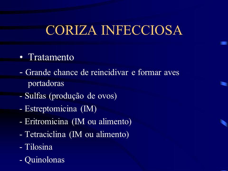 CORIZA INFECCIOSA Tratamento - Grande chance de reincidivar e formar aves portadoras - Sulfas (produção de ovos) - Estreptomicina (IM) - Eritromicina (IM ou alimento) - Tetraciclina (IM ou alimento) - Tilosina - Quinolonas