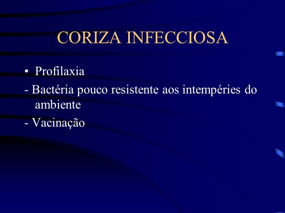 CORIZA INFECCIOSA Profilaxia - Bactéria pouco resistente aos intempéries do ambiente - Vacinação