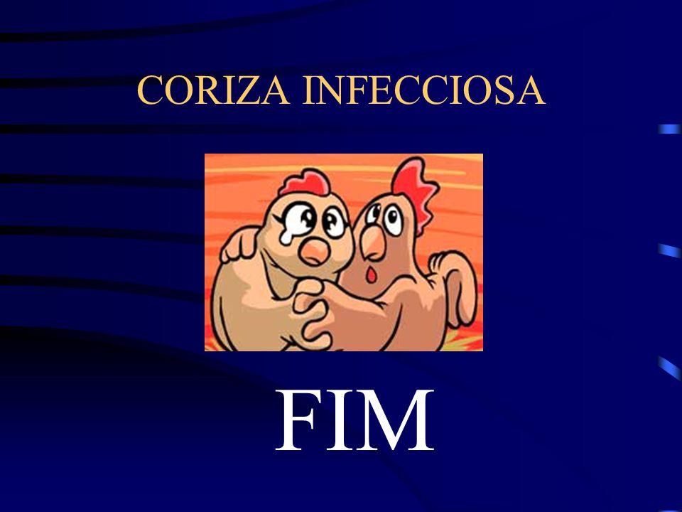 CORIZA INFECCIOSA FIM