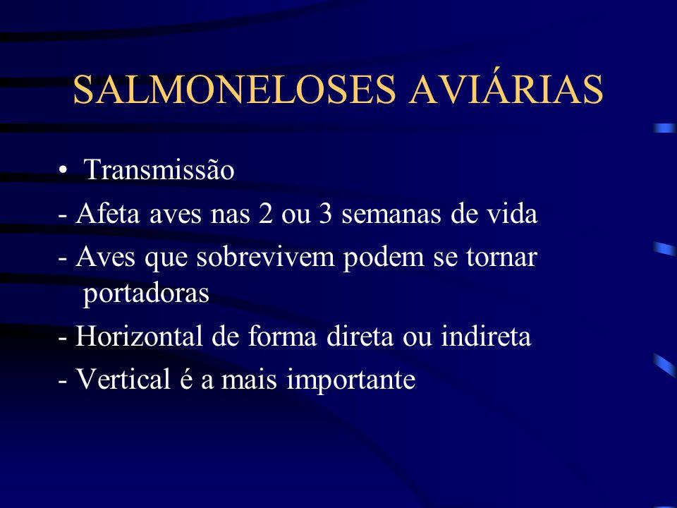SALMONELOSES AVIÁRIAS Transmissão - Horizontal de forma direta ou indireta Sinais clínicos - Apatia - Anorexia - Perda de peso - Queda na produção de ovos - Anemia