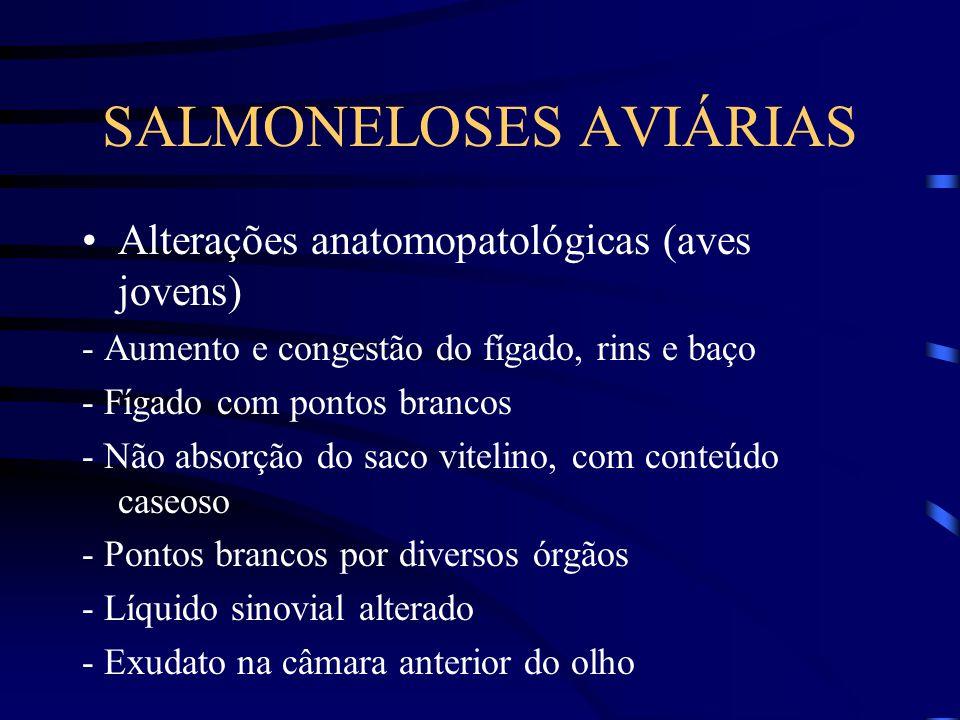 SALMONELOSES AVIÁRIAS