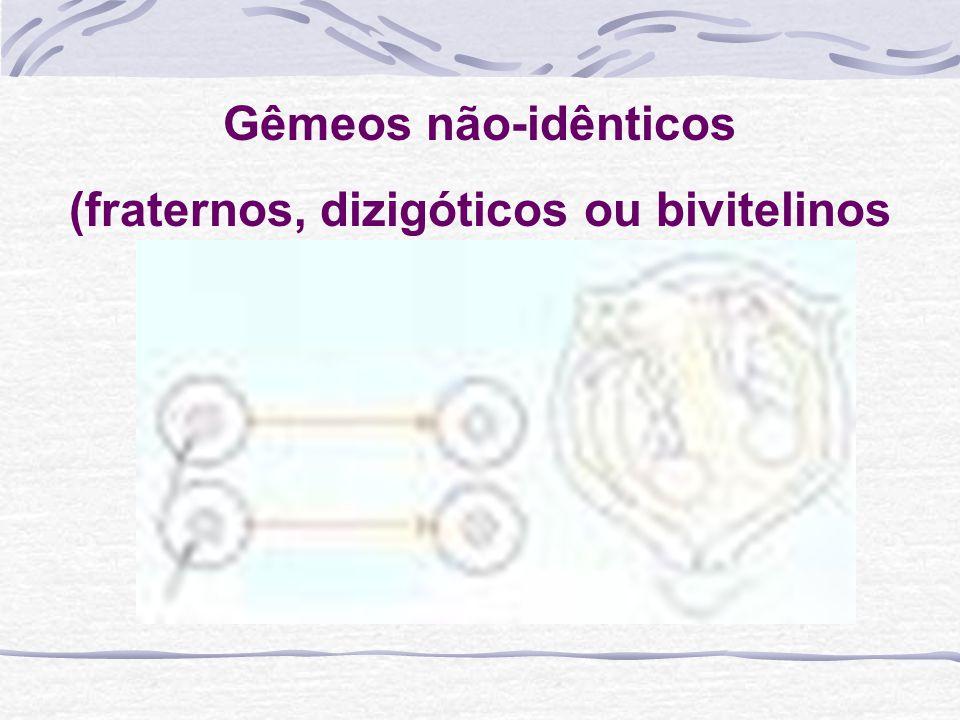 Gêmeos não-idênticos (fraternos, dizigóticos ou bivitelinos