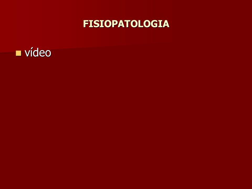 FISIOPATOLOGIA vídeo vídeo