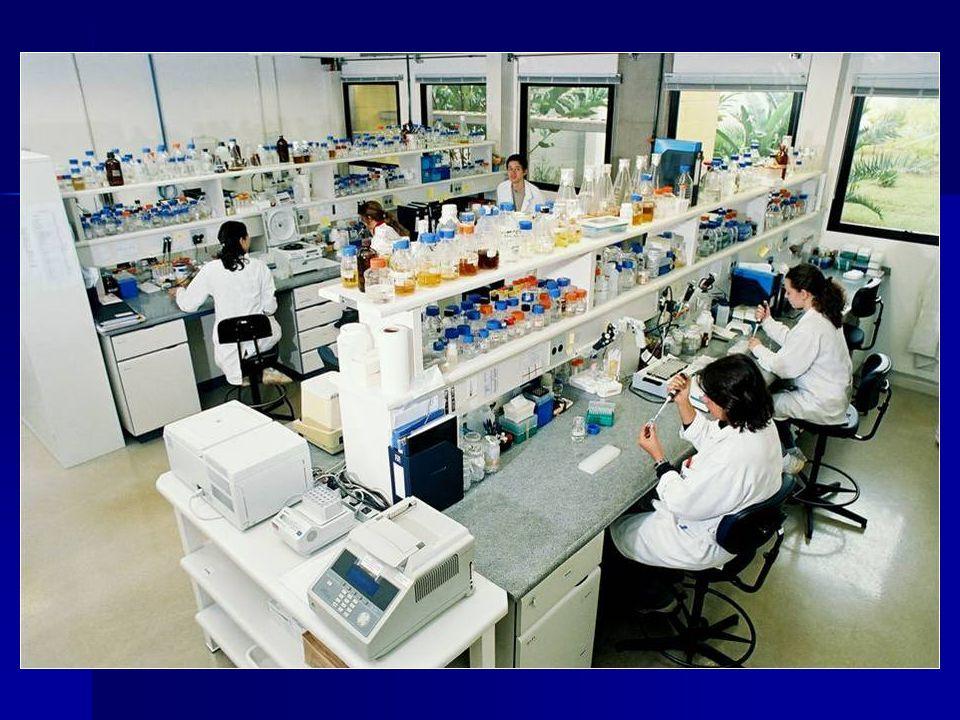 BIOSSEGURANÇA RISCOS BIOLÓGICOS HEPATITE B: HEPATITE B: Estima-se 350 milhões de portadores crônicos; Estima-se 350 milhões de portadores crônicos; Assume uma taxa anual de 60 casos para Assume uma taxa anual de 60 casos para 100.000 profissionais de saúde; - Conscientização dos profissionais; - Treinamento para prevenção de exposição; - Disponibilidade da vacina(cuja eficácia é de 90% a 95%).