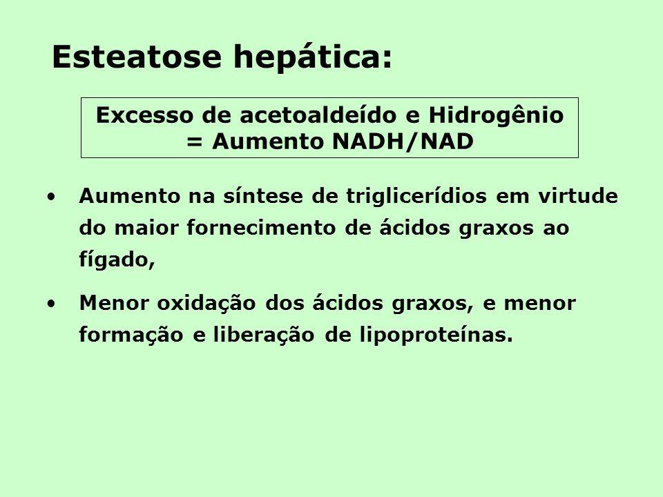 Esteatose hepática: Aumento na síntese de triglicerídios em virtude do maior fornecimento de ácidos graxos ao fígado, Menor oxidação dos ácidos graxos