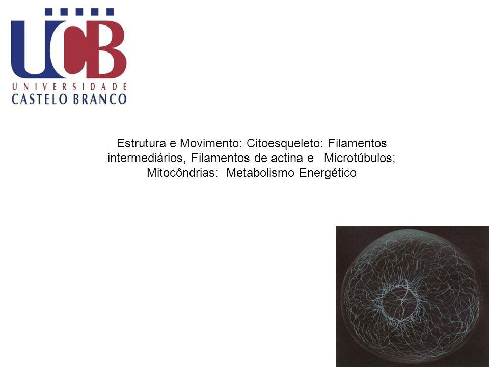 Fisiologia Geral Estrutura e Movimento: Citoesqueleto: Filamentos intermediários, Filamentos de actina e Microtúbulos; Mitocôndrias: Metabolismo Energético