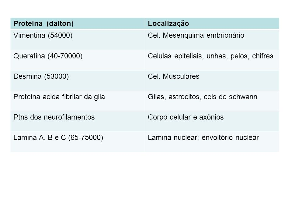Proteina (dalton)Localização Vimentina (54000)Cel.