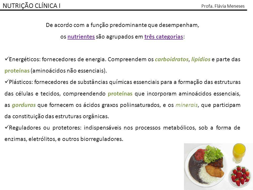 NUTRIÇÃO CLÍNICA I Profa. Flávia Meneses De acordo com a função predominante que desempenham, os nutrientes são agrupados em três categorias: Energéti