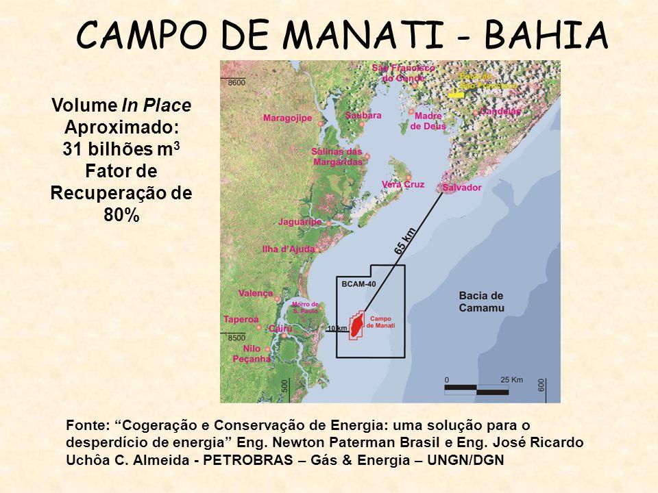 CAMPO DE MANATI - BAHIA Volume In Place Aproximado: 31 bilhões m 3 Fator de Recuperação de 80% Fonte: Cogeração e Conservação de Energia: uma solução