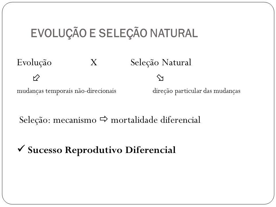 EVOLUÇÃO E SELEÇÃO NATURAL Evolução X Seleção Natural mudanças temporais não-direcionais direção particular das mudanças Seleção: mecanismo mortalidad