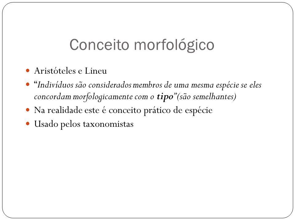 Conceito morfológico Aristóteles e Lineu Indivíduos são considerados membros de uma mesma espécie se eles concordam morfologicamente com o tipo (são s