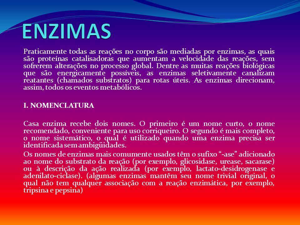 V.EQUAÇÃO DE MICHAELIS-MENTEN A.