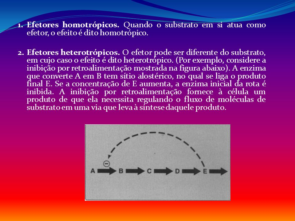 1. Efetores homotrópicos. Quando o substrato em si atua como efetor, o efeito é dito homotrópico. 2. Efetores heterotrópicos. O efetor pode ser difere