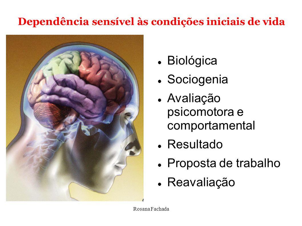 Rosana Fachada Dependência sensível às condições iniciais de vida Relação de interdependência com o meio Aparato biológico ia do comportamento resulta