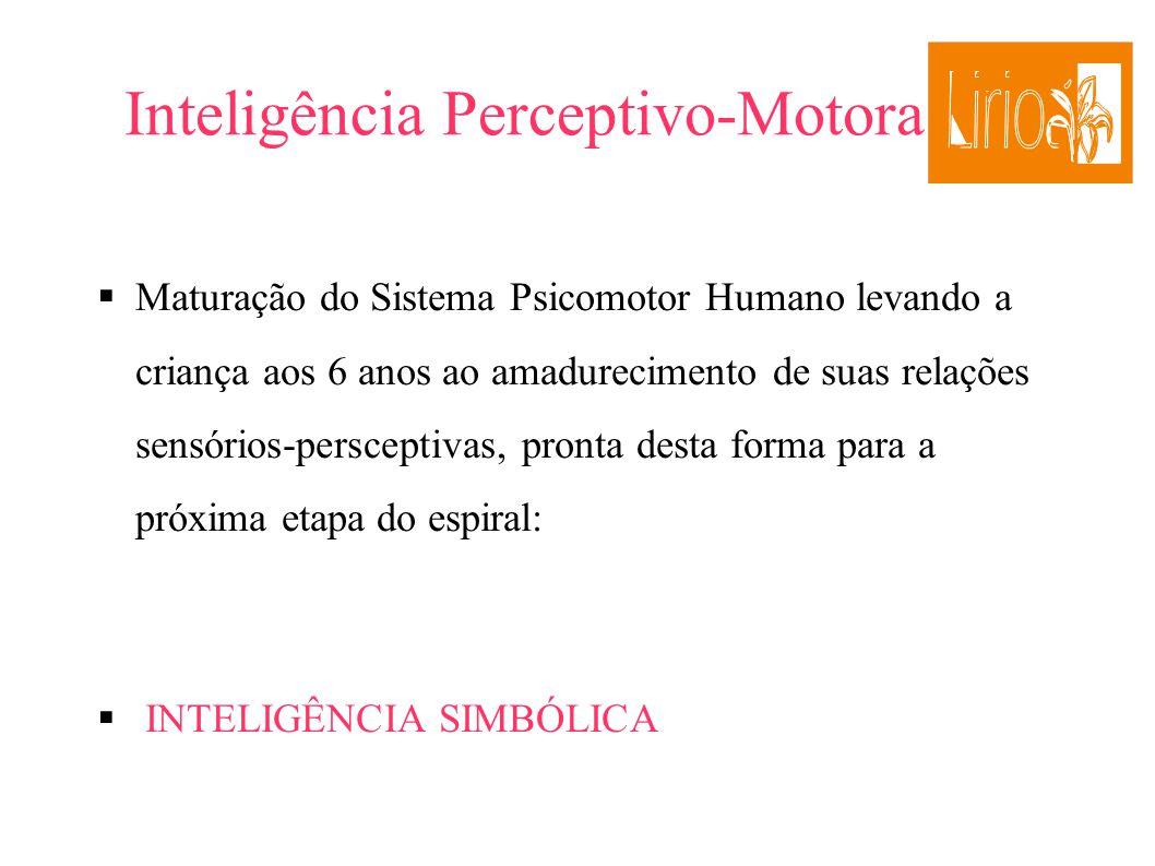 Inteligência Perceptivo-Motora Maturação do Sistema Psicomotor Humano levando a criança aos 6 anos ao amadurecimento de suas relações sensórios-persce