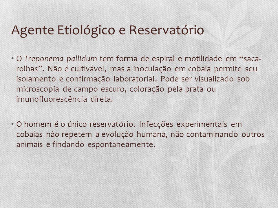 Agente Etiológico e Reservatório O Treponema pallidum tem forma de espiral e motilidade em saca- rolhas. Não é cultivável, mas a inoculação em cobaia