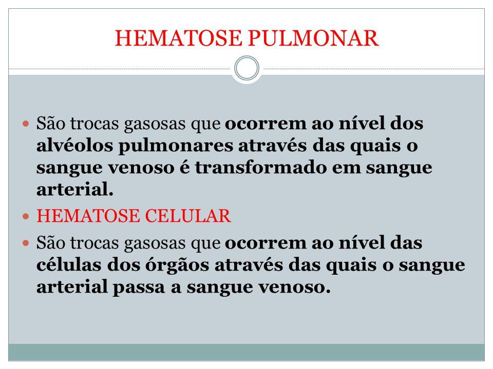 HEMATOSE PULMONAR São trocas gasosas que ocorrem ao nível dos alvéolos pulmonares através das quais o sangue venoso é transformado em sangue arterial.