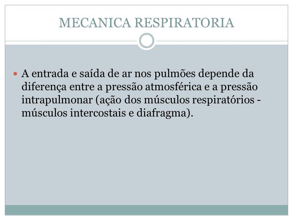 MECANICA RESPIRATORIA A entrada e saída de ar nos pulmões depende da diferença entre a pressão atmosférica e a pressão intrapulmonar (ação dos músculo