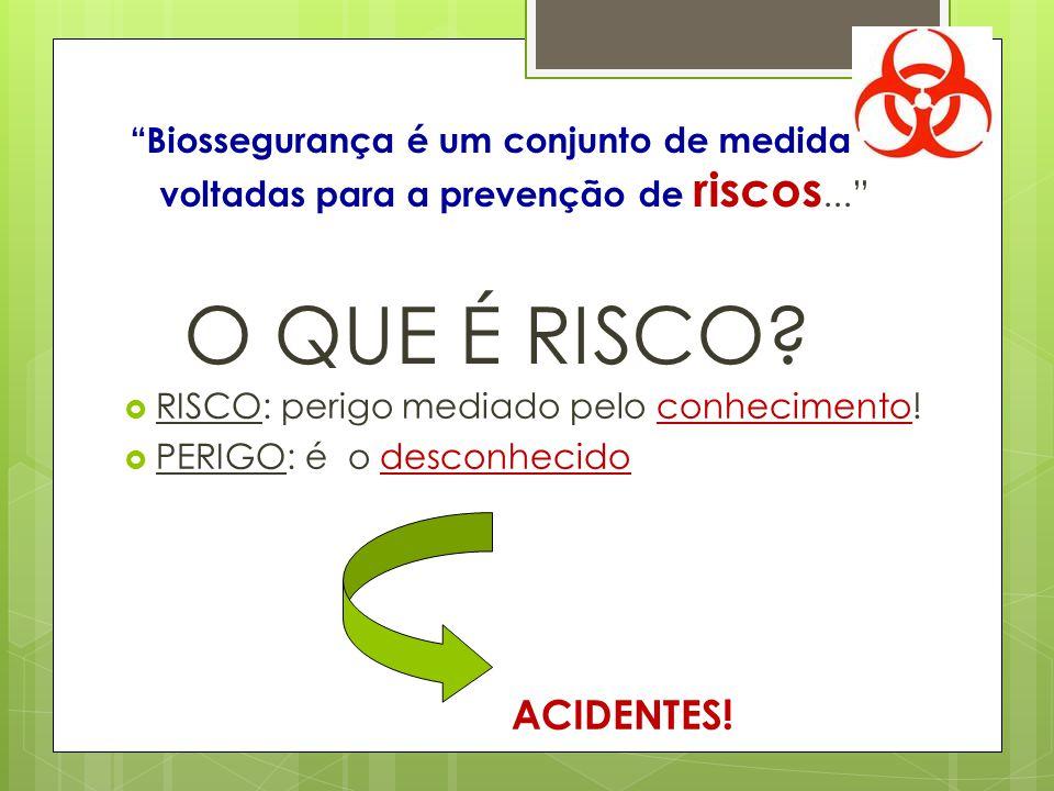Biossegurança é um conjunto de medidas voltadas para a prevenção de riscos... O QUE É RISCO? RISCO: perigo mediado pelo conhecimento! PERIGO: é o desc