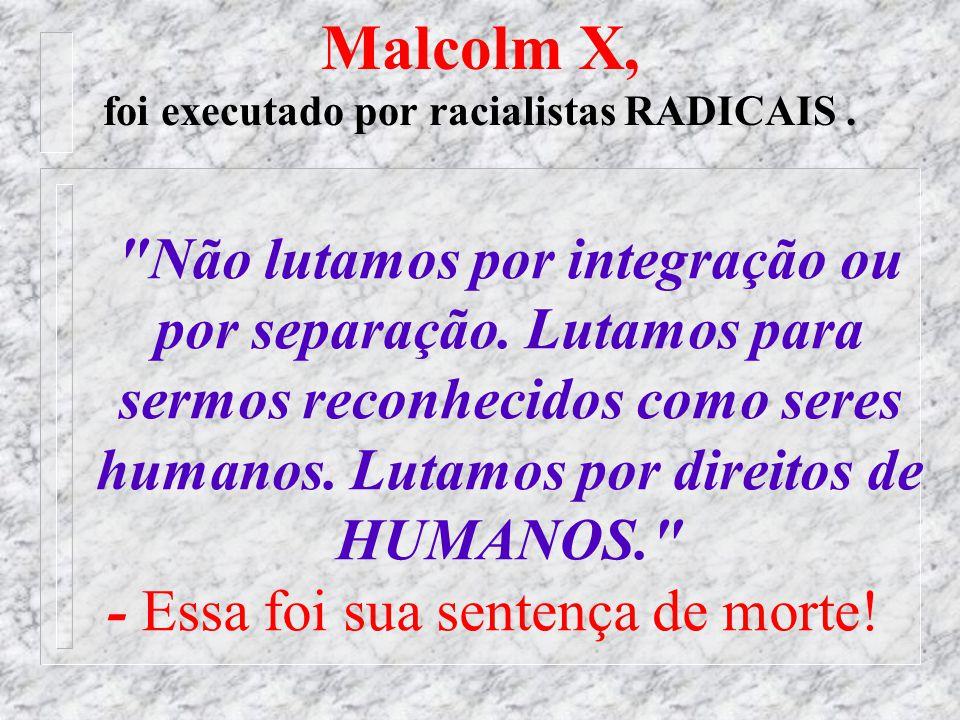 39 As Cotas Sociais: Bolsa Família Exemplo de AA não racial (80%). - a inclusão de afro-brasileiros nas oportunidades em geral não pode ser pela ´raça
