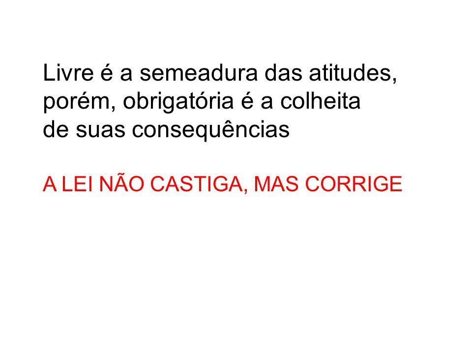 Livre é a semeadura das atitudes, porém, obrigatória é a colheita de suas consequências A LEI NÃO CASTIGA, MAS CORRIGE