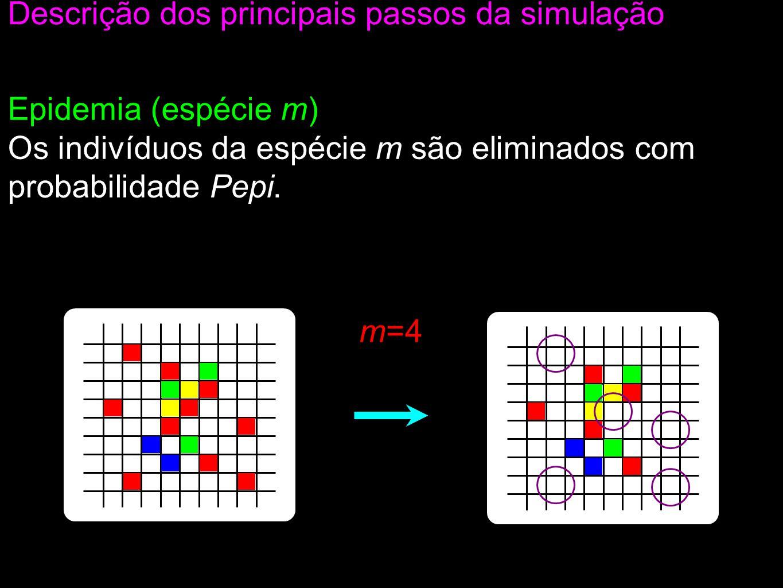 Epidemia (espécie m) Os indivíduos da espécie m são eliminados com probabilidade Pepi.