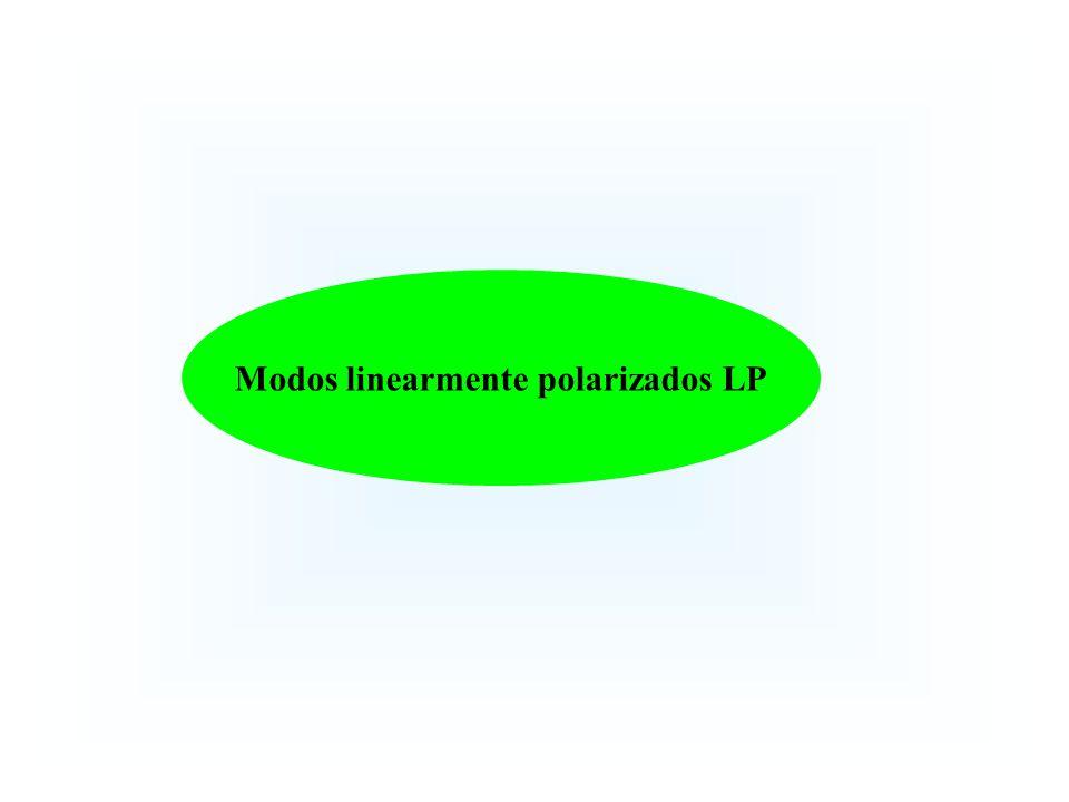 Modos linearmente polarizados LP