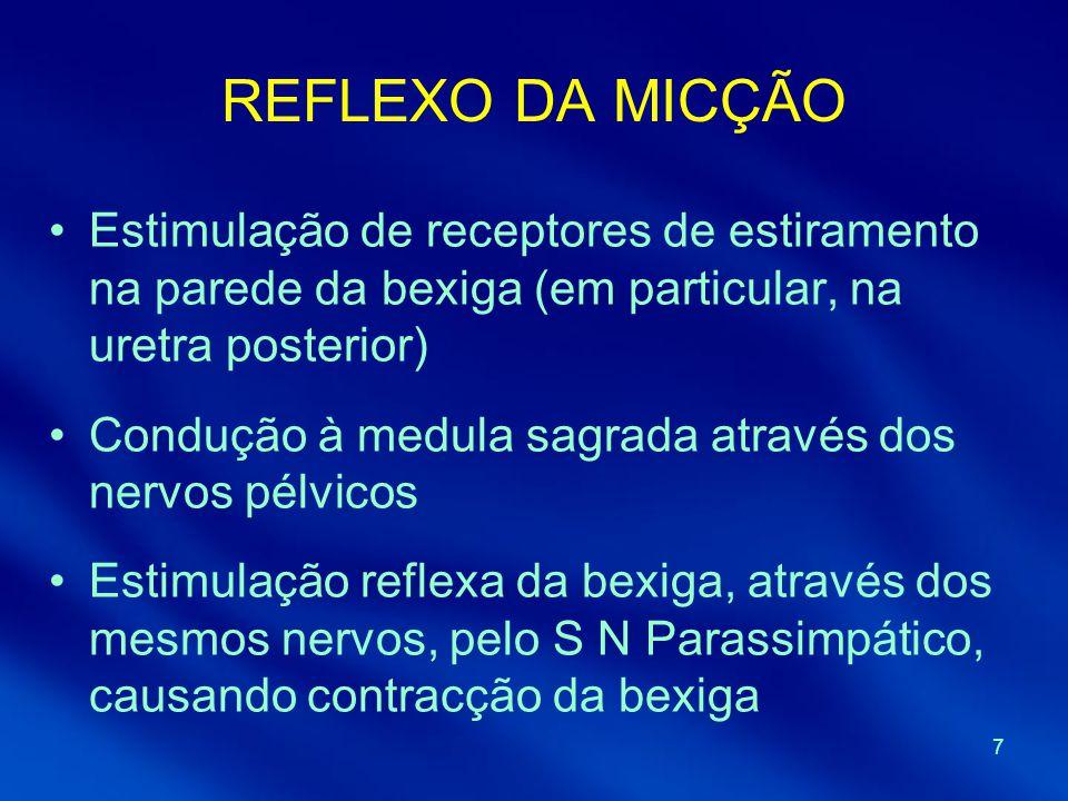 7 REFLEXO DA MICÇÃO Estimulação de receptores de estiramento na parede da bexiga (em particular, na uretra posterior) Condução à medula sagrada atravé